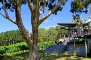Private Adelaide Hills wine tour at the beautiful Mt Lofty Ranges Vineyard