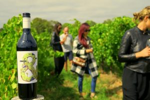 Private McLaren Vale wine tour in the vineyards with the winemaker of Hither & Yon